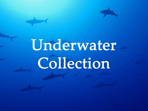 Underwater Collection